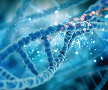 Uma modelagem gráfica de uma molécula de DNA